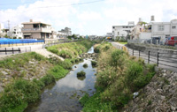 The Kokuba River