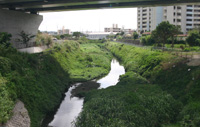 Nagadou river